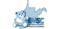 Picture of a teddy bear in a sling representing the EMS for Children program.